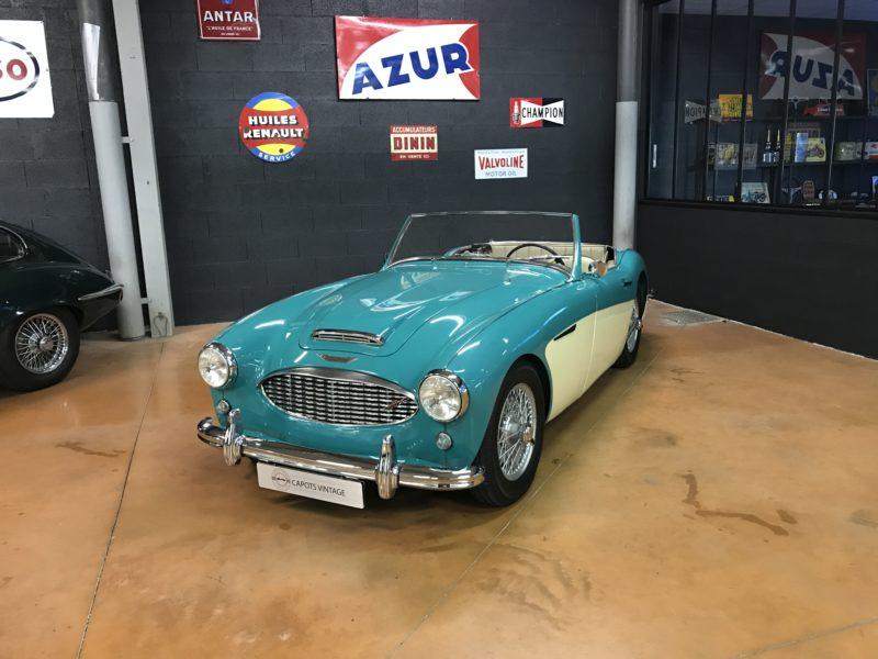 Austin Healey 100/6 BN4 Blue – Avant